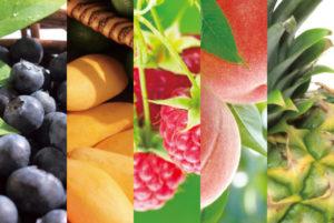 告知情報! 7/1(木)~ 今年も開催します。真夏のフルーツ祭り開催日程のご案内!