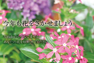 8月24日(火) 第14回公募展『花』作品募集受付を終了しました。